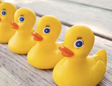 ברווזים במסדר - מודעות לחודש אלול