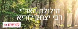 """שפע של אור הילולת האר""""י - רבי יצחק לוריא"""