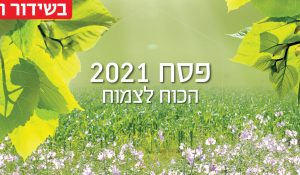 Pesach_banner